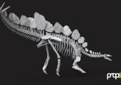 Laser-Scan und 3D-Druck im Naturhistorischen Museum
