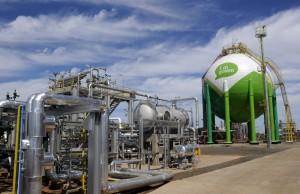 Rohstoff-Basis für Biokunststoffe