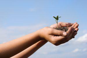 Neue Möglichkeiten für mehr Nachhaltigkeit
