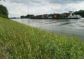 Ufersicherung mit bioabbaubarem Kunststoff