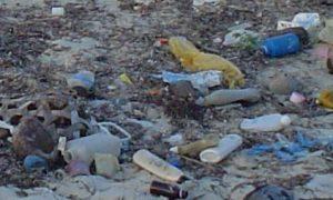 Nach Angaben der IK Industrievereinigung Kunststoffverpackungen werden etwa 80 Prozent des weltweiten Plastikmülls in den Meeren von Ländern aus Asien eingetragen, etwa 0,02 Prozent kommt aus Deutschland und rund 1 Prozent aus Europa. Im Bild: Strand von Msasani Bay bei Dar es Salaam in Tansania, 2005. (Bildquelle: Wikipedia/Loranchet)