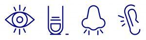 TPE im Automobil bieten Vorteile für vier der fünf klassischen Sinne. Bildquelle: Hexpol TPE