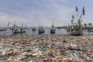 Fischerhafen in Nuncar, Ost-Java, Indonesien. (Bildquelle: System IQ)