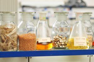 Ausgangsstoffe für biogene Werkstoffe. (Bildquelle: TH Bingen)