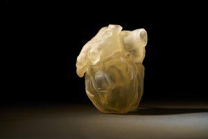 3D-gedrucktes Modell eines Herzens, hergestellt mit dem neuen 3D-Drucker, der die Haptik, die Empfindlichkeit und die biomechanischen Eigenschaften der menschlichen Anatomie reproduziert. (Bildquelle:  Stratasys)