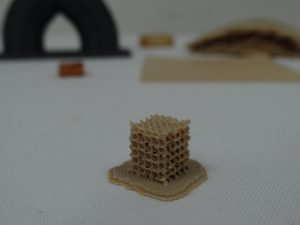 Die Gyroid-Struktur befindet sich noch in der Entwicklungsphase. Diese Struktur soll ein Einwachsen von Knochenzellen verbessern. (Bildquelle: Simone Fischer/Redaktion Plastverarbeiter)