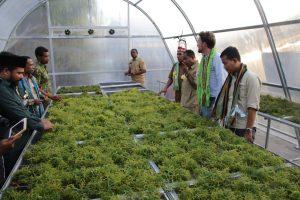 In den mit Solarenergie betriebenen Gewächshäusern werden Lebensmittel getrocknet, um sie haltbarer zu machen. (Bildquelle: Covestro)