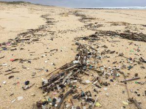 Für die Flut von Plastikmüll in den Ozean gibt es bisher keine koordinierten Lösungen. (Bild: Fraunhofer Umsicht/Leandra Hamann)