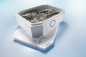 Produkte für Lebensmittelverpackungen: Frischhaltebox für Fische (Bildquelle: BASF)