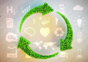 Biobasierte Verpackungsmaterialien als nachhaltige Alternative zu petrochemischen Verpackungen. (Bildquelle: malp - stock.adobe.com)