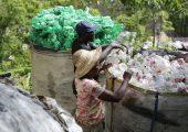 Sammeln von PET-Flaschen in Port-au-Prince, Haiti, zum Recyceln. (Bildquelle: HP)