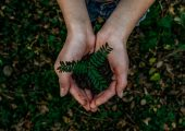 Weniger CO2, weniger Plastikmüll, weniger Erdöl-Verbrauch: Das ist sowohl ökonomisch als auch ökologisch ein lohnenswertes Ziel. (Bildquelle: Tinby)