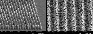 Zellwachstumshemmende spritzgegossene mikrostrukturierte LSR-Oberflächen für Cochleaimplantate. (Bildquelle: Jenoptik/Fraunhofer ILT Aachen/KUZ)