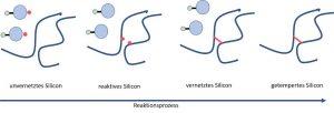 Schema des Reaktionsprozesses während der Silikonvernetzung und anschließender Temperung. Die roten Punkte stellen die reaktiven Radikale dar.