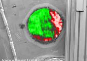 """Für das Forschungsprojekt werden die lokale Defektresonanz als auch  der nichtlineare Ultraschall vom Herstellungsprozess bis zum """"End-of-Life"""" für die Charakterisierung der Qualität von Klebverbindung validiert. (Bildquelle: IKT)"""