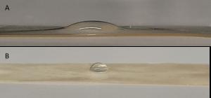 Aufnahme eines Wassertropfens auf der Oberfläche einer Molkenproteinfolie (A) und der Oberläche einer mit Palmitinsäure hydrophobisierten Molkenproteinfolie (B), (Fettsäurepfropfreaktion bei 160 °C, 10 min). (Bild: hs-albsig)