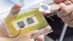 Die biologisch abbaubare Batterie besteht aus vier Schichten, die alle nacheinander aus einem 3D-Drucker fließen. Das Ganze wird dann wie ein Sandwich zusammengefaltet, mit dem Elektrolyten in der Mitte. (Bild: Gian Vaitl / Empa)