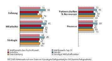 Reifegrad-Profile im Vergleich:Unterschiede zwischen Dienstleistung, Industrie und Handel sowie zu denTop-10-Unternehmen
