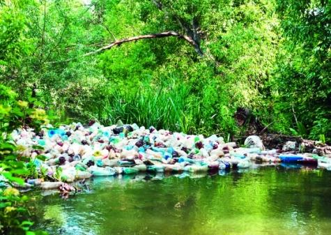 Achtlos weggeworfene Kunststoffabfälle bedeuten Verlust für die Kunststoffverarbeiter – und sind ein Problem für die Umwelt. Bild: (Bildquelle: Narcis Parfenti – Fotolia.com)