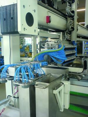 Für die Automation werden Kavitäten in Gruppen sortiert. (Bildquelle: Waldorf Technik)